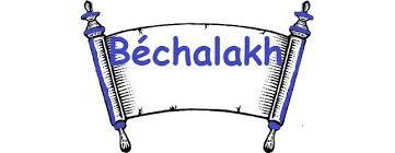 paracha bechalakh